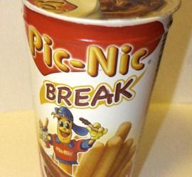 pic_nic_break